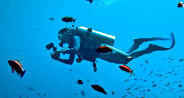 Aquaworld Cancun Discover Scuba Dive Image Gallery