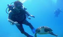 Aquaworld Cozumel Discover Scuba Image