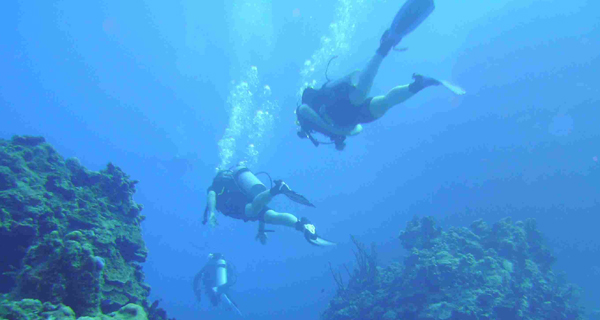 Aquaworld Cozumel Open Water Referral Image Gallery