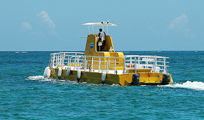 Cozumel Daytrip from Cancun with Sub See Explorer Image