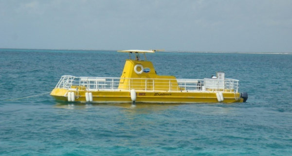 Cozumel Daytrip from Cancun with Sub See Explorer Image Gallery
