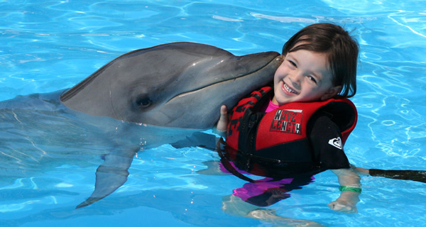 Dolphin Encounter at Isla Mujeres Image Gallery