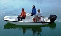 La Sirenita 15 Boston Whaler Image
