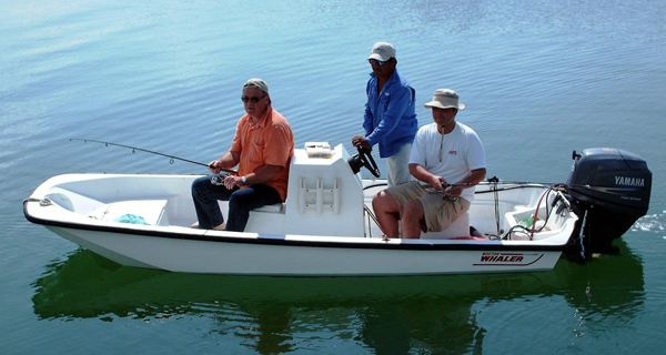La Sirenita 15 Boston Whaler Image Gallery