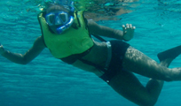 Paradise Snorkeling Cancun Image