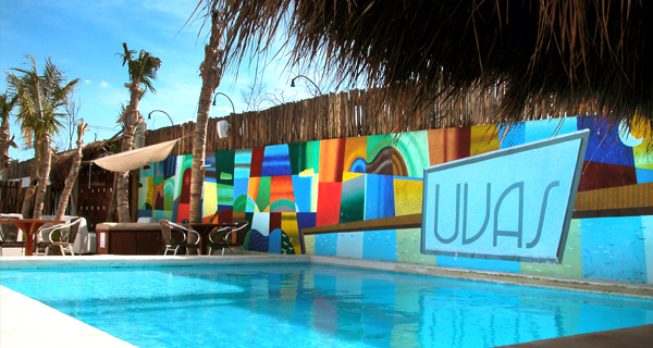 Playa Uva Snorkel VIP Image Gallery