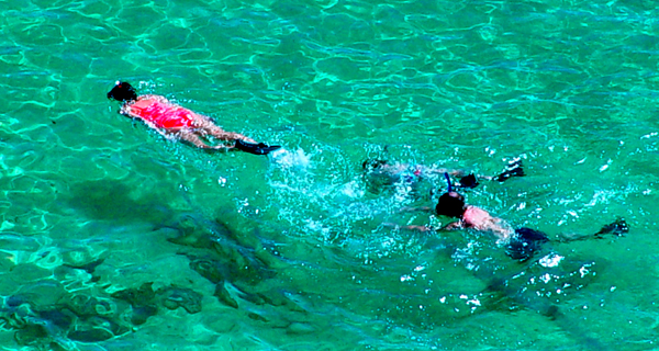 Querida Del Mar Private Snorkeling Cruise Image Gallery