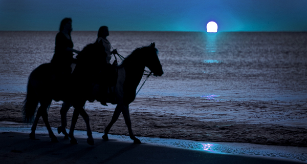 Rancho Baaxal Full Moon Horseback Riding Image