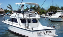 Sea Fox 34 Phoenix Image