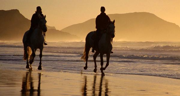 X-treme Horseback Riding